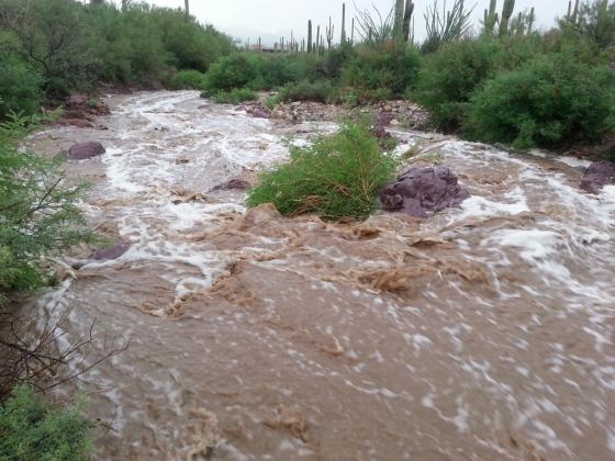 081514_flood