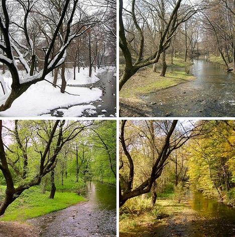 seasons-changing-3