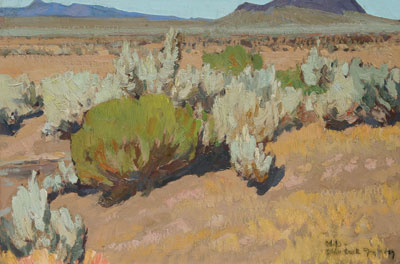 Dixon-sage-and-rabbit-brush