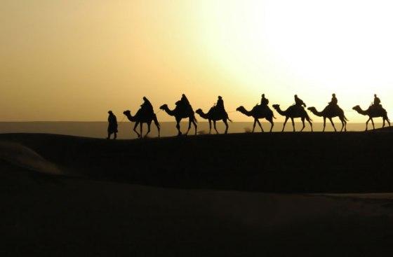 sahara-nomads-camels-660
