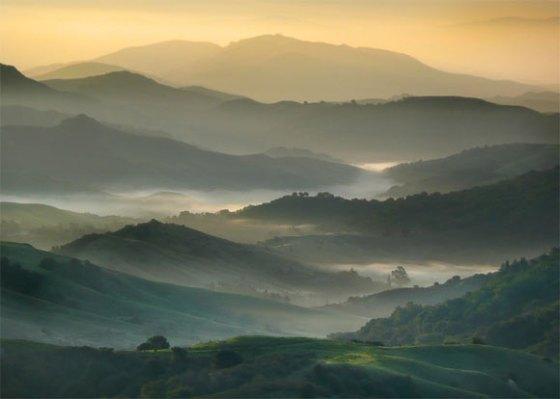 12-east-bay-hills