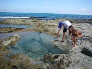 tide-pools